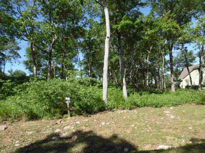 0 ADAM LOOP, Bath Springs, TN 38311 - Image 1