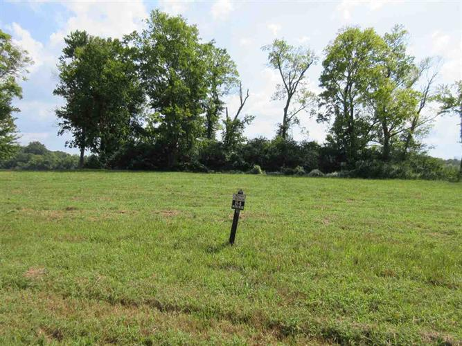 LOT 84 SANDY, Savannah, TN 38372