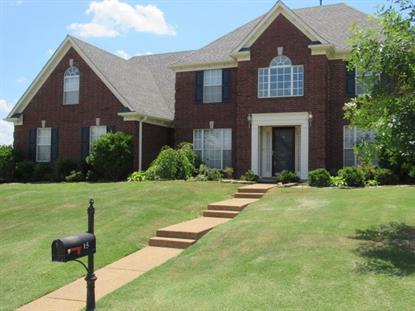 15 MISTY HILL , Oakland, TN