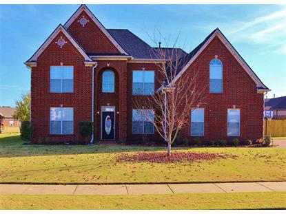 12425 CAYMUS  Arlington, TN MLS# 10014433