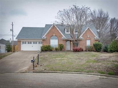 9656 SHADOW GREEN , Lakeland, TN