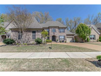 254 RED SEA , Collierville, TN