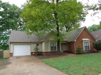 4031 BIRCH GLEN , Memphis, TN