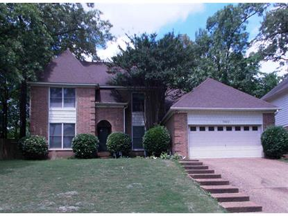 7820 TEAL LAKE  Cordova, TN MLS# 10027678