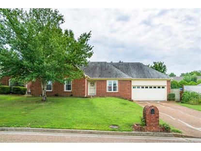 8227 RIVER CREEK , Cordova, TN