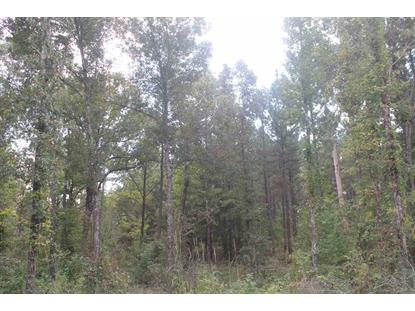 0 COUNTY ROAD 71  Myrtle, MS MLS# 10038471