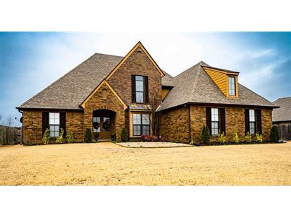 Arlington Tn Homes For Sale Weichertcom