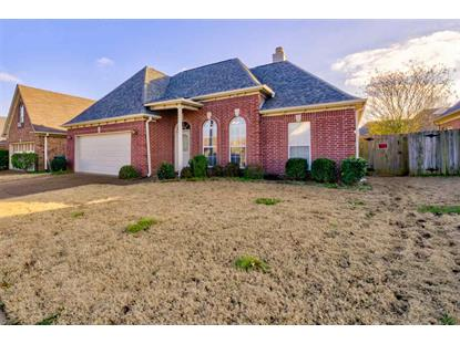 10155 TALL HICKORY  Memphis, TN MLS# 10044077
