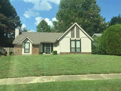 6512 FROSTY LEAF  Memphis, TN MLS# 10055200