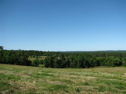 0 FEDERAL RD Counce, TN MLS# 10073815
