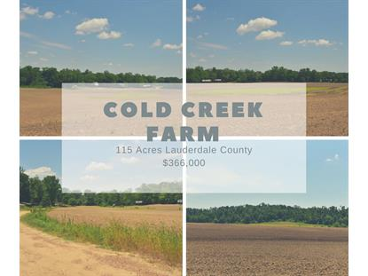 COLD CREEK RD Henning, TN MLS# 10079719