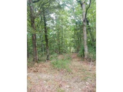 00 WINDING RIDGE RD Adamsville, TN MLS# 10081725