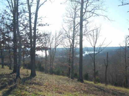 489 RIVERS EDGE DR Bath Springs, TN MLS# 10091777