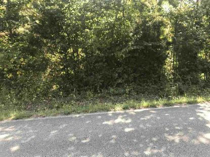 THREE WAY RD Decaturville, TN MLS# 10091972