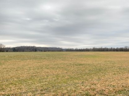 645 MARTIN LANDING RD Bath Springs, TN MLS# 10093747