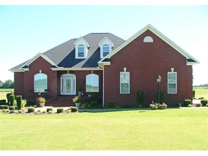 733 BUD CLEARY , Stantonville, TN