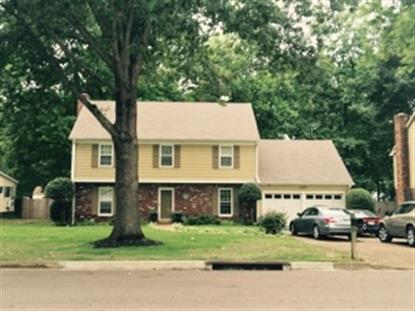 2447 BIRCH TREE  Germantown, TN MLS# 9988183
