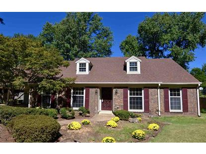 7104 BLUE GRASS  Germantown, TN MLS# 9992445