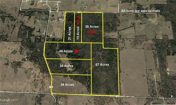 45ac. County Road 115, Gainesville, TX 76240