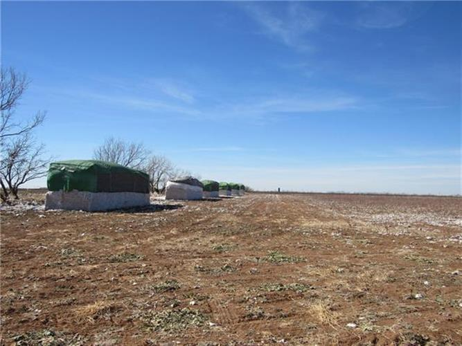 TBD County Road 297, Anson, TX 79501