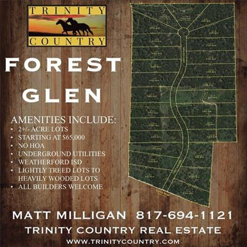 Lot 13 Forest Glen Road, Weatherford, TX 76087
