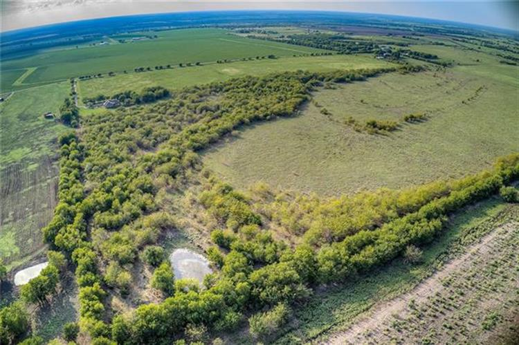 TBD CR4305, Greenville, TX 75401 - Image 1