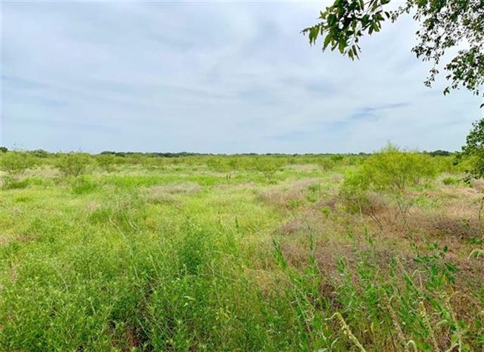 TBD Wesley Chapel RD, Gholson, TX 76705 - Image 1