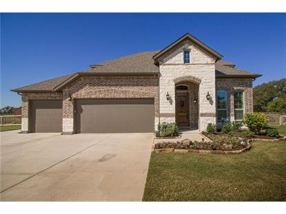 8018 Meadow Grove Drive , McKinney, TX