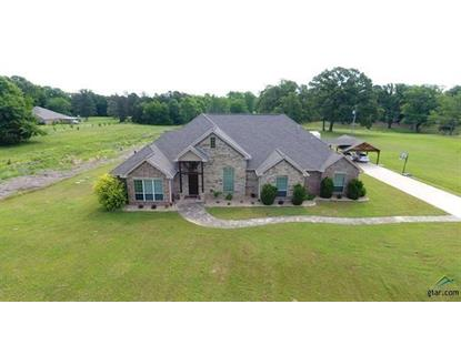 440 CR 3245 , Mount Pleasant, TX