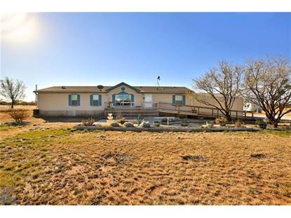 20326 CR 304  Abilene, TX MLS# 13979088