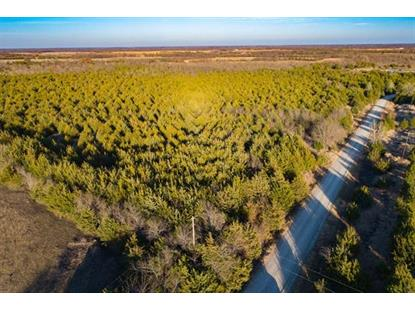 53 acs County Rd 4519  Wolfe City, TX MLS# 13988411