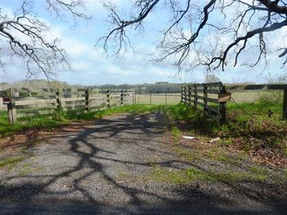 0 County Road 4700  Athens, TX MLS# 14300984