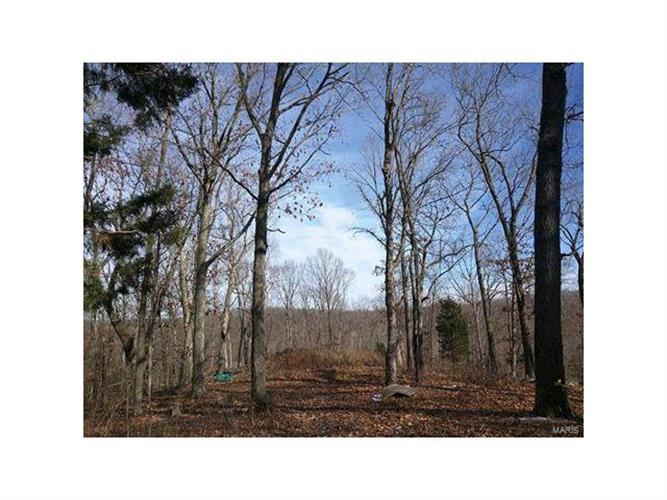 71 +/- Acres  Lot 1 Wedgewood, House Springs, MO 63051
