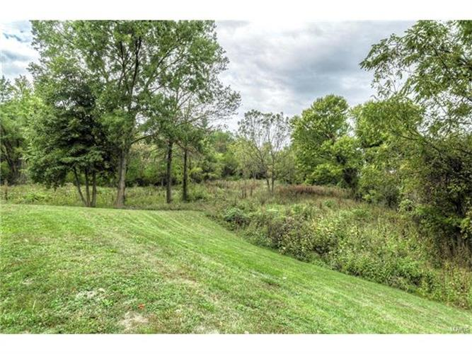 17331 Wild Horse Creek Road, Chesterfield, MO 63005
