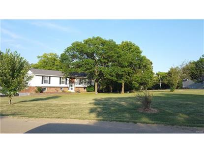 800 Cottage Road Bonne Terre, MO MLS# 16044993