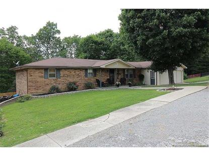 135 Highway B  Marble Hill, MO MLS# 17001757