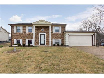1398 Frost Wood Trail Lane Fenton, MO MLS# 17009618