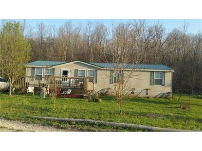 742 County Road 4283 , Salem, MO