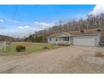 4056 Canebrake Valley  Dittmer, MO MLS# 18017797