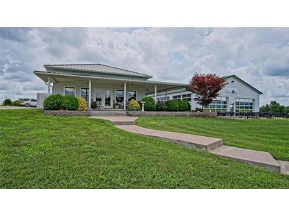 6470 Hwy F  Farmington, MO MLS# 18055754