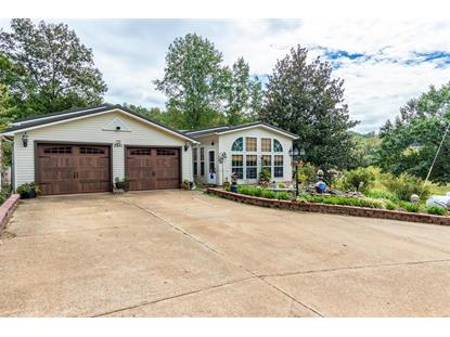 2381 County Road 460  Annapolis, MO MLS# 18078628