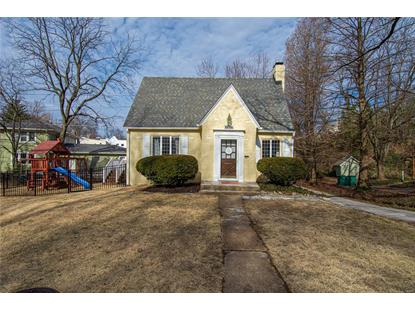 703 Dale Avenue Saint Louis, MO MLS# 20004686