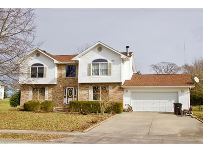 205 Frances Lane Carbondale, IL MLS# 20033647