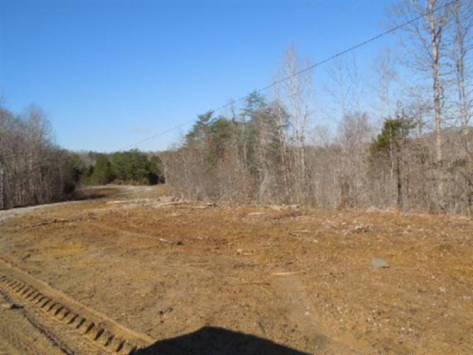 52 .10 Ac. Thunder Bay Trail, Burkesville, KY 42717