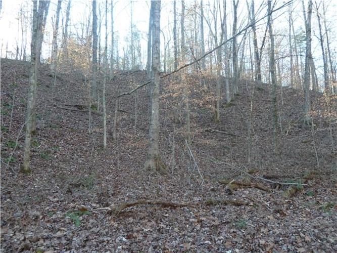 0 Moore Hollow Rd., Dickson, TN 37055
