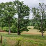 10538 Valley View Rd, Lascassas, TN 37085