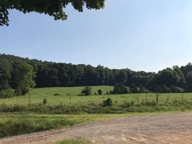 1073 Rogers Hollow Rd, Mc Minnville, TN 37110 - Image 1