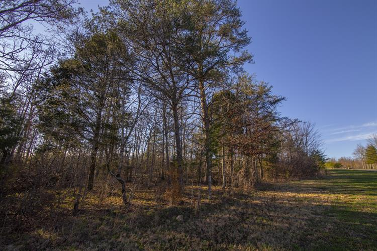 0 Long Branch Road, Spencer, TN 38585 - Image 1