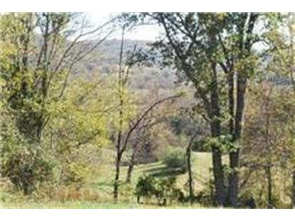 0 Sowell Hollow Rd, Columbia, TN