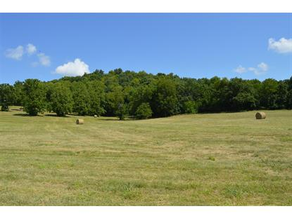 0 Blue Creek Rd Cornersville, TN MLS# 1756451